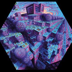 acrylic on canvas jake amazon hypercube
