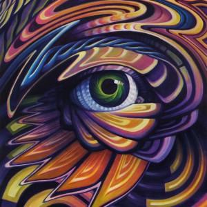 acrylic on canvas jake amazon illusive gaze